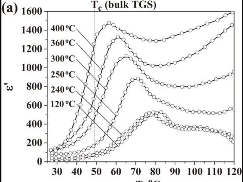 Effects of Carbonization on Electrophysical Properties of Cellulose-Based Nanocomposites with Triglycine Sulfate.